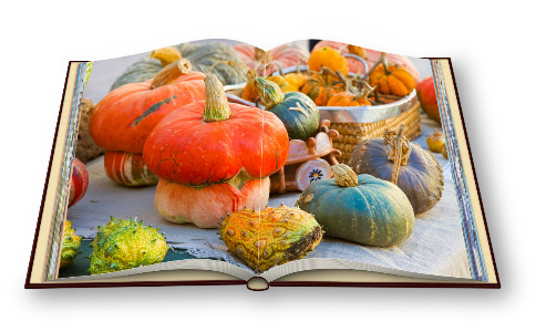 秋冬季滋补汤 萝卜羊排汤的做法